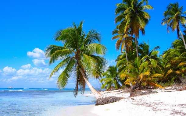 Saona Island beach, near La Altagracia Province, Dominican Republic