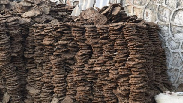 cow dung patties sales in India