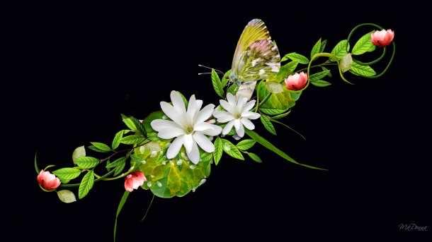 flower wallpaper 14