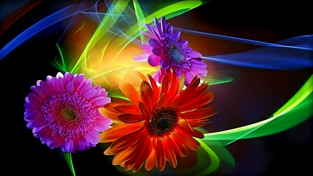 flower wallpaper 22
