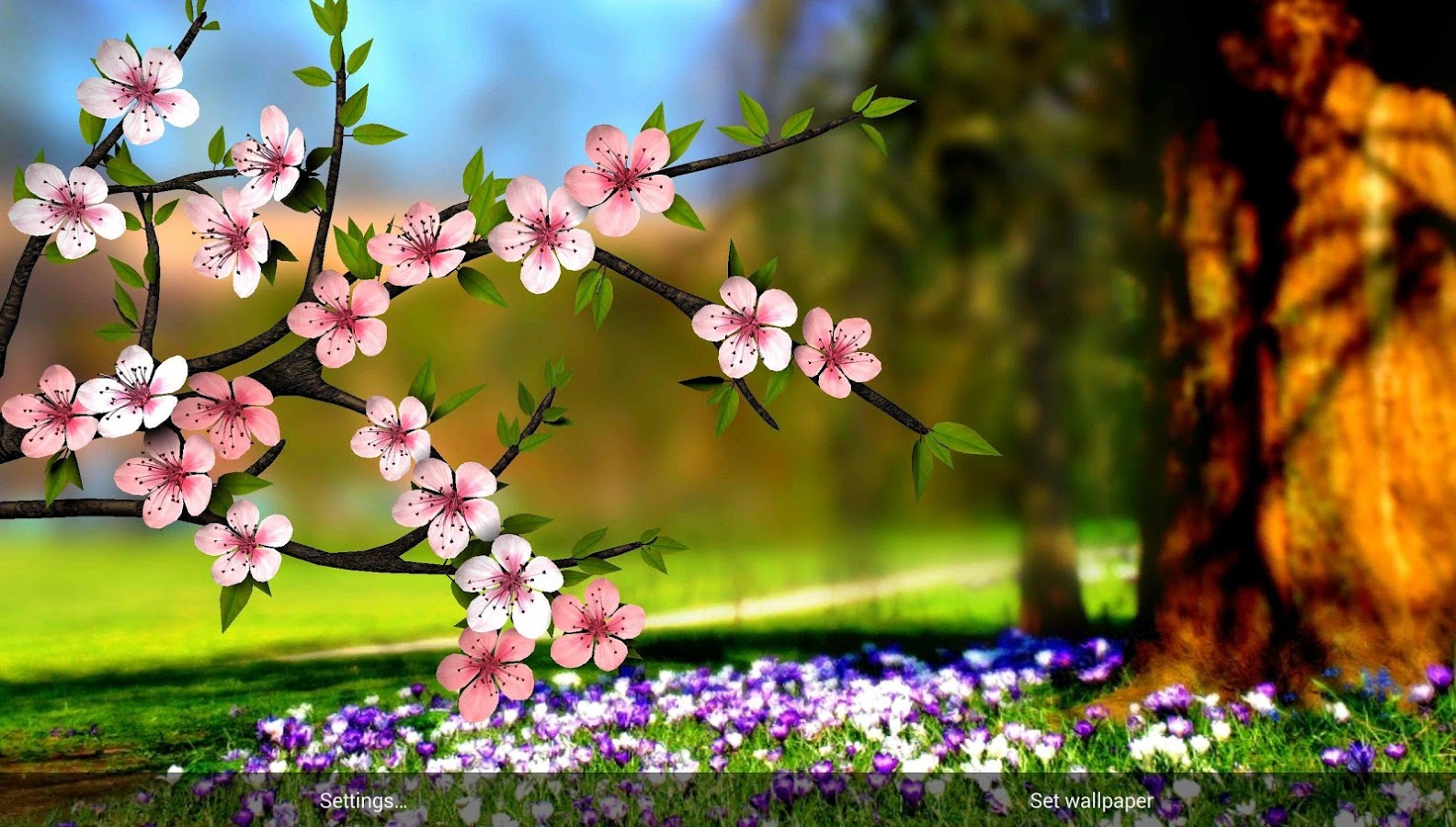 friends download spring wallpaper - photo #7