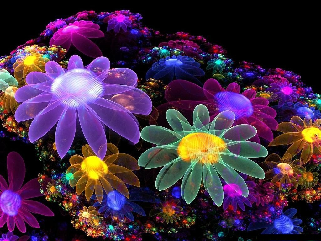 50 Beautiful Flower Wallpaper Images For Download