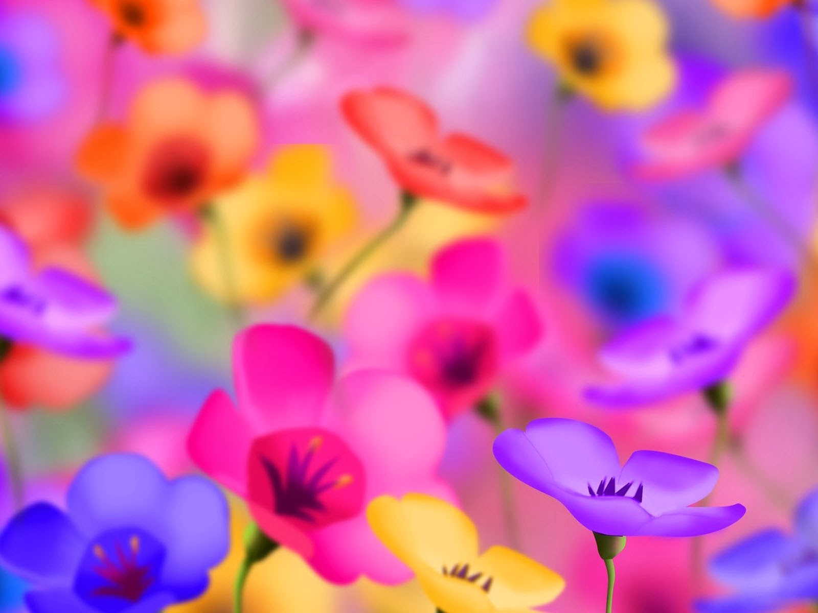 50 Beautiful Flower Wallpaper Images For Download,What Goes Well With Blue And Orange