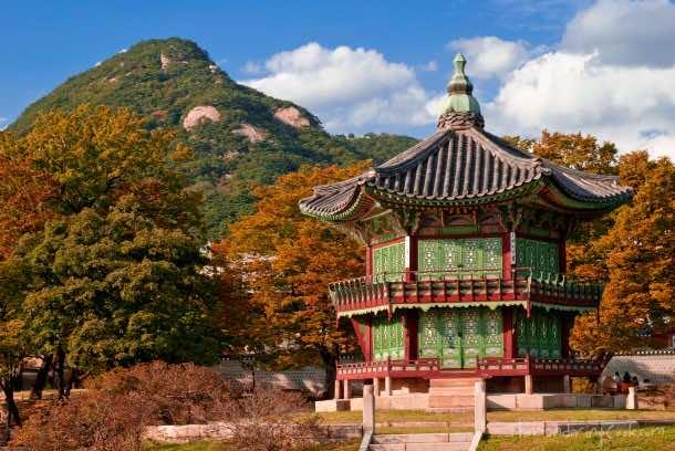 Autumn leaves at Gyeongbok Palace, Seoul, South Korea