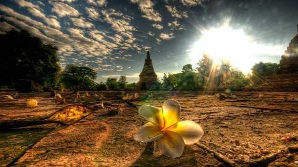 thailand wallpaper 37