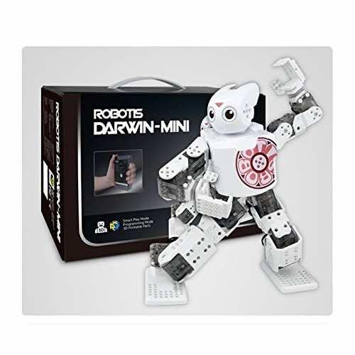10 Best Humanoid Robots (6)