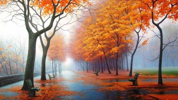 Autumn wallpaper 21