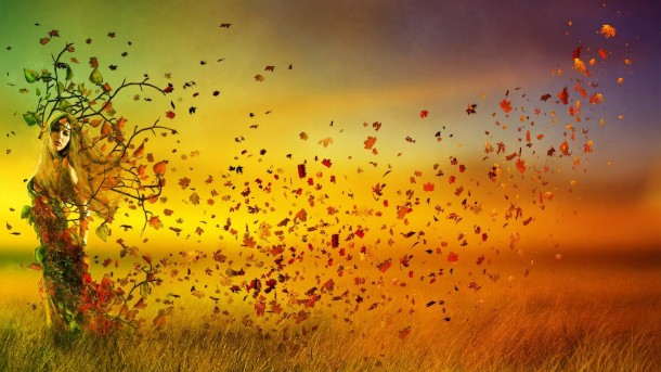 Autumn wallpaper 9