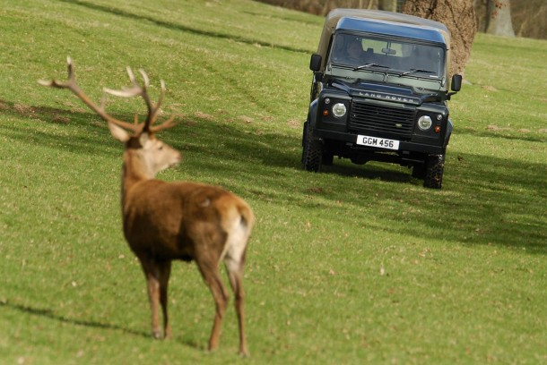 Land Rover Has Ceased Production Of Its Iconic Defender 8