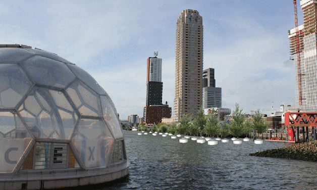 Rotterdam floating forest3