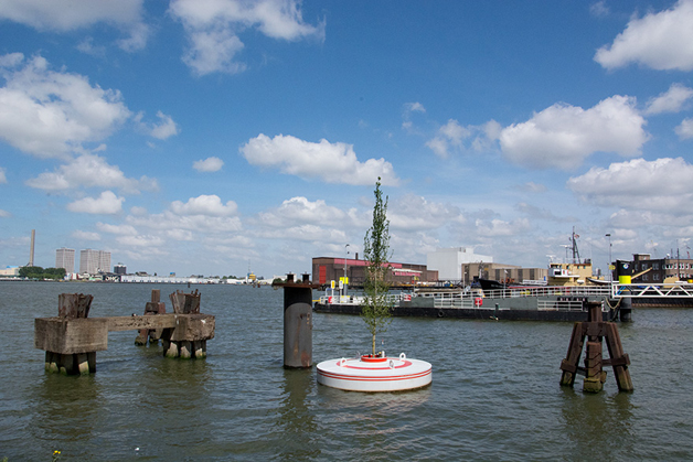 Rotterdam floating forestw