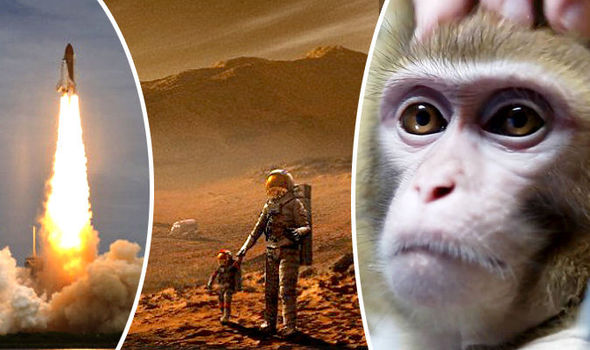 Russians Are Training Monkeys For A Mission To Mars 5
