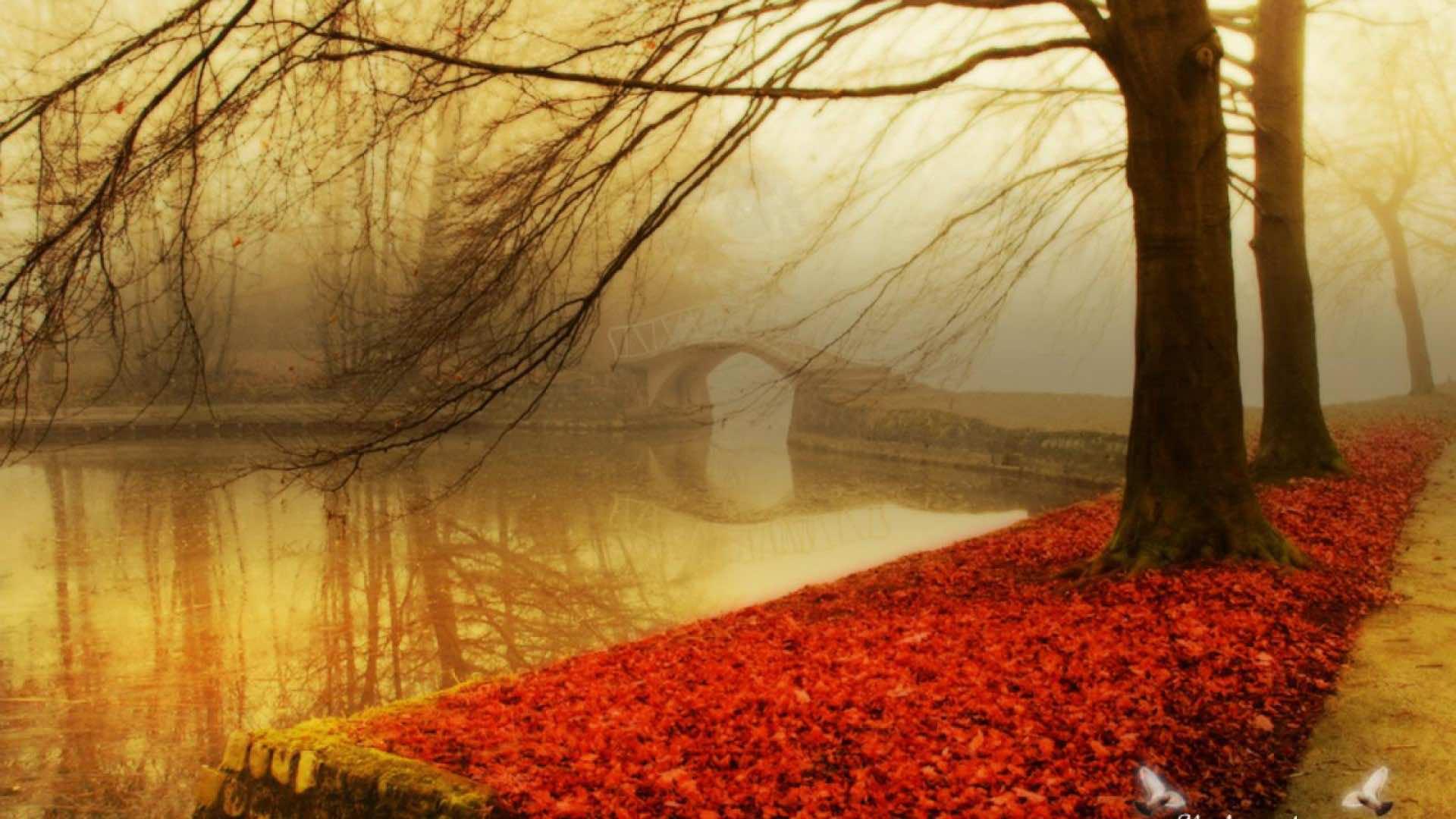 fall wallpaper 17