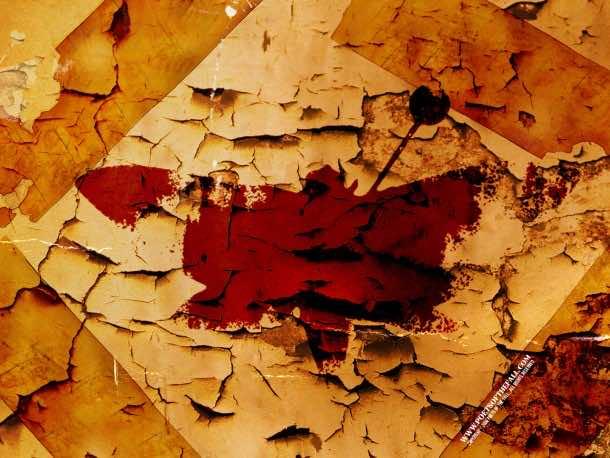 fall wallpaper 2