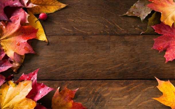 fall wallpaper 30