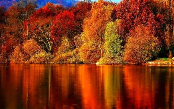 fall wallpaper 45