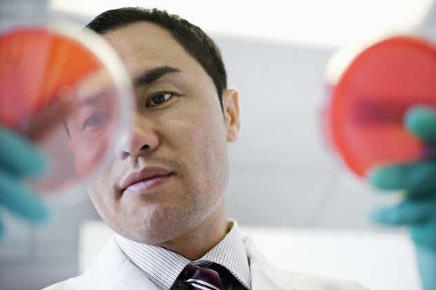 Lab Technician Holding Petri Dish