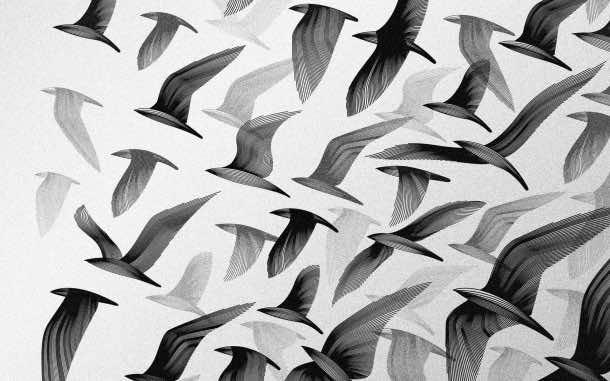 white wallpaper 59