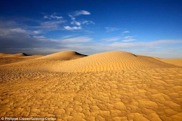 30 million dollar farm in Sahara desert2