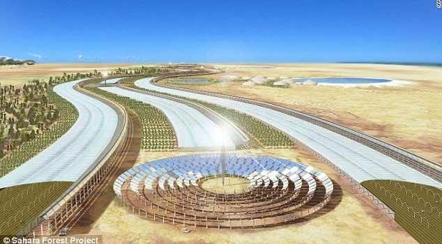 30 million dollar farm in Sahara desert5