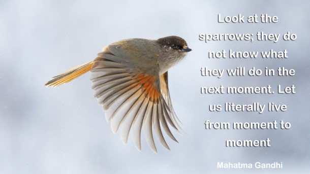Inspiring Quotes (42)