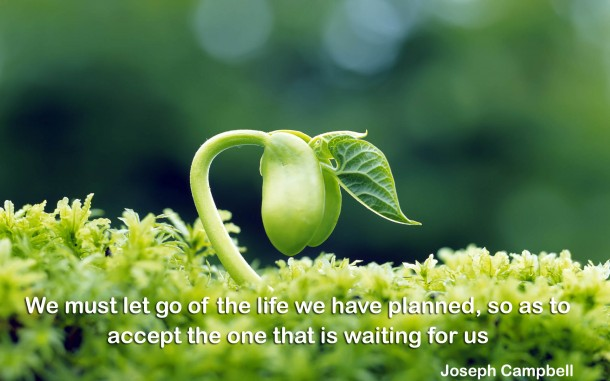 Inspiring Quotes (7)