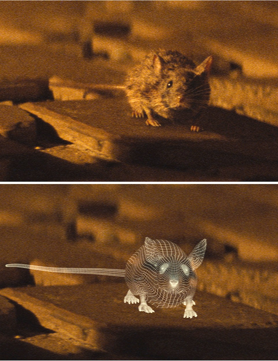 Spectre (2015) James Bond is led to his next clue in the hunt for Blofeld by a mouse which crawls along the floor to a secret room within an apartment 'Who sent you?' Bond asks the mouse - we see (BOTTOM) entirely the mouse was computer trickery