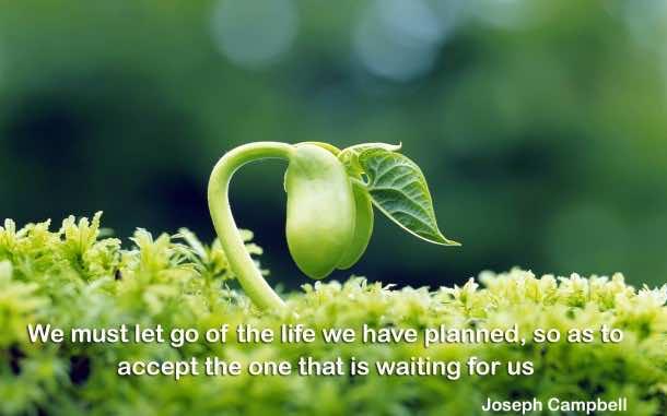 Motivational Quotes  (7)