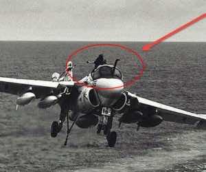 Navigator stuck halfway in canop in midair3