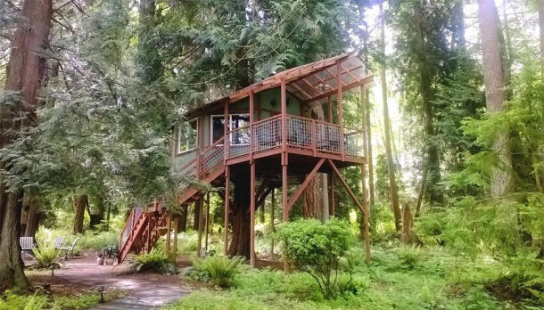 These Are The 10 Best Airbnb TreeHouses You Can Rent 8