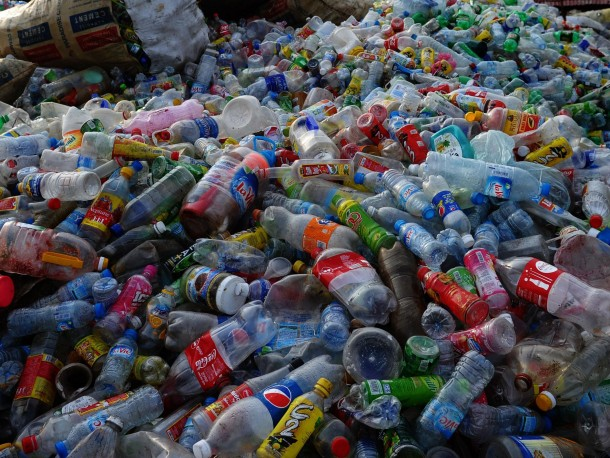 This Bacteria Can Degrade Plastic Bottles, Study Claims 2