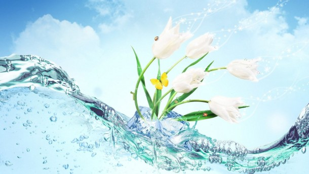 Water wallpaper 60