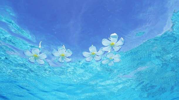 Water wallpaper 61