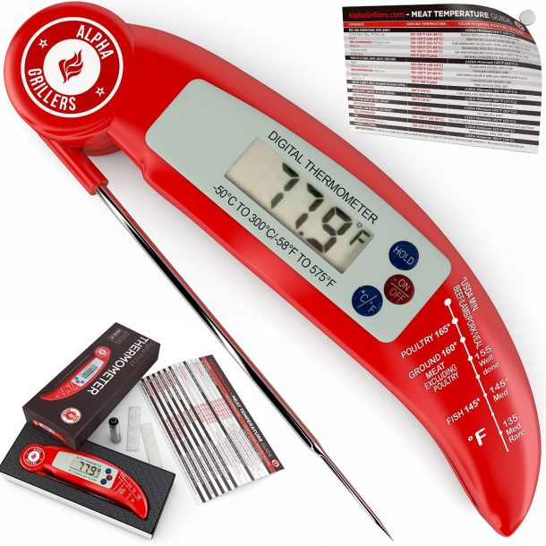 10 Best Food Thermometers (10)