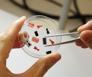 3D Printing Tech Combines Multiple Drugs In A Single Pill_Image 1