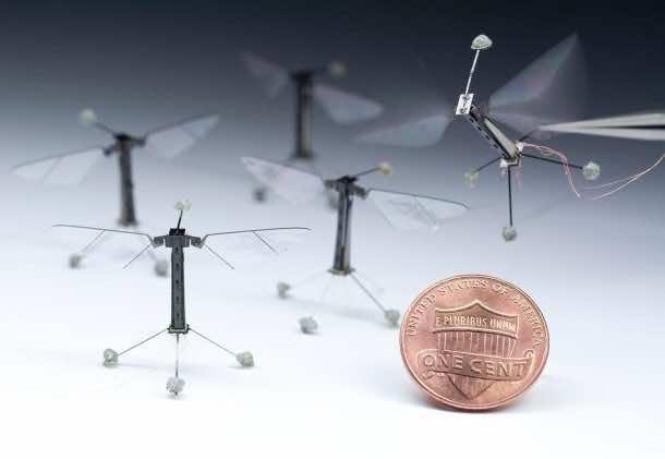 5 Robots Based On Real Life Animals_Robobees_Image 1_Wonderful Engineering