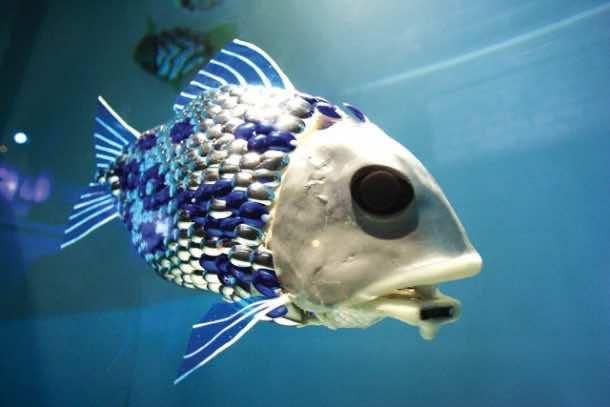 5 Robots Based On Real Life Animals_Robotic Fish_Image 1_Wonderful Engineering