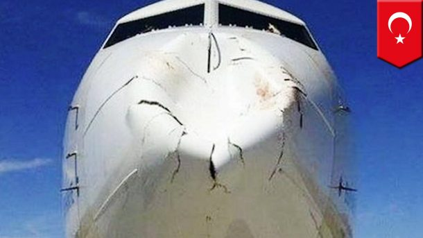 Here Is A New Technology That Could Save Birds From Flying Into Planes_Image 4
