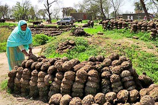 Poo-Powered Pumps Help Pakistan Farmers Grow Richer Greener_Image 2