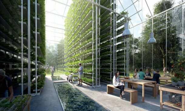 ReGen Village aims to be the Tesla of Eco-Villages_Image 4