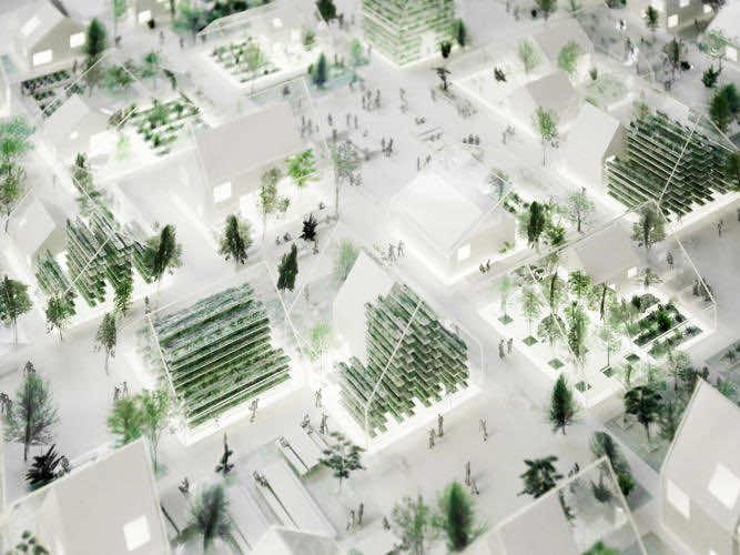 ReGen Village aims to be the Tesla of Eco-Villages_Image 7
