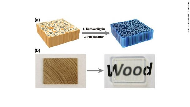 The Versatility Of Invisible Wood_Image 6