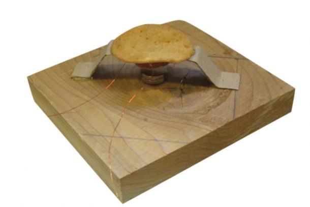 potato chip audio speaker _Image 2