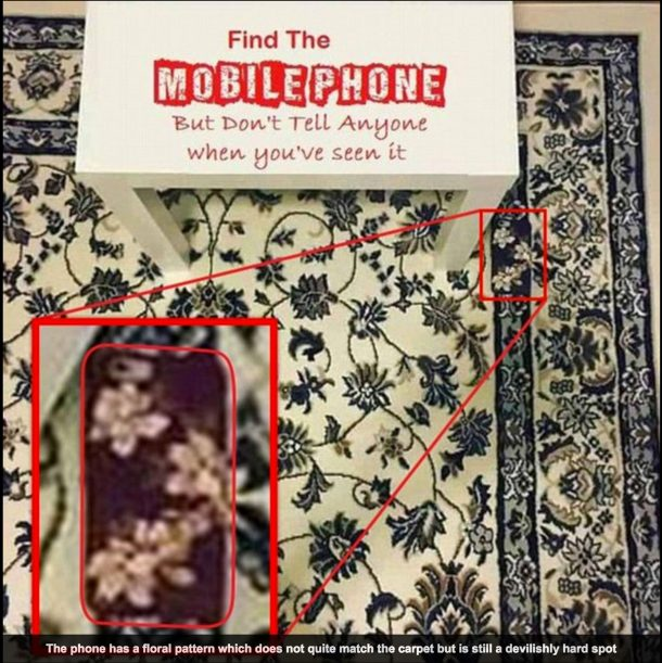 Can you spot the cellphone on the rug_Image 6