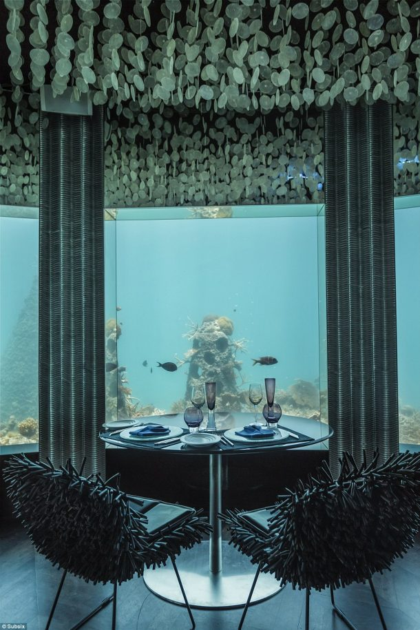 Subsix A Unique Dining 20 Feet Under the Indian Ocean_Image 2