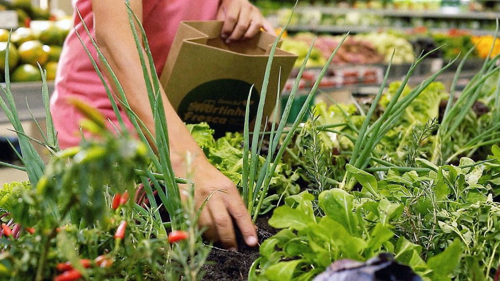 This Brazilian Supermarket Allows Its Customers Pick Their Produce From A Garden_Image 0