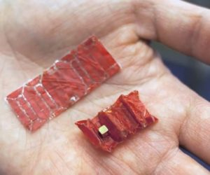This Incredible Origami Robot Is The Answer To All Your Stomach Troubles_Image 0