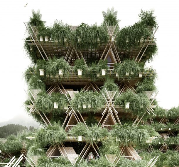As more layers of bamboo are added, a treehouse would form.