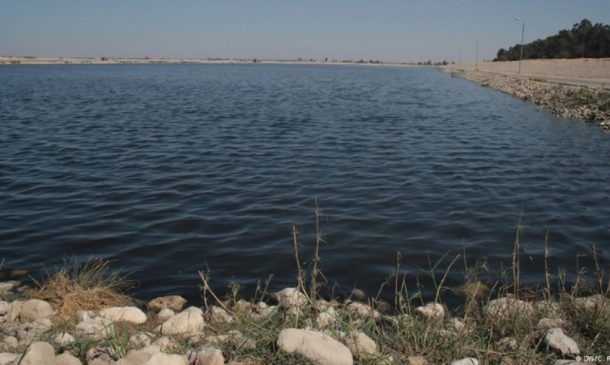 Egyptian Researchers Use Sewage To Grow Forests In The Desert_Image 3