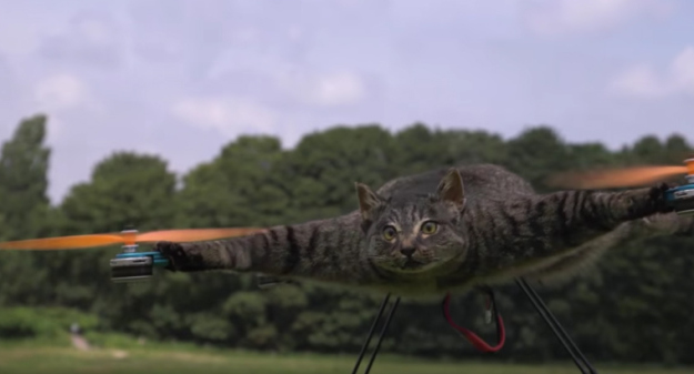 This Project Makes Your Dead Pets Fly By Turning Them Into Drones_Image 1